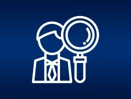 Auxílio em auditorias e fiscalizações
